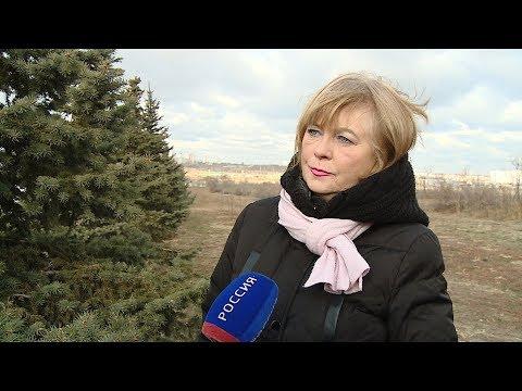 В Волгоградской области ожидается ухудшение погоды