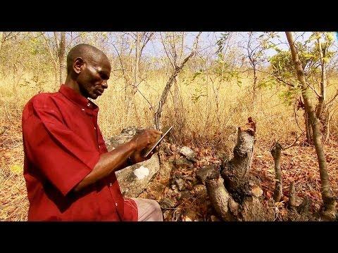 Tanzania: Google-Powered Chimpanzee Conservation