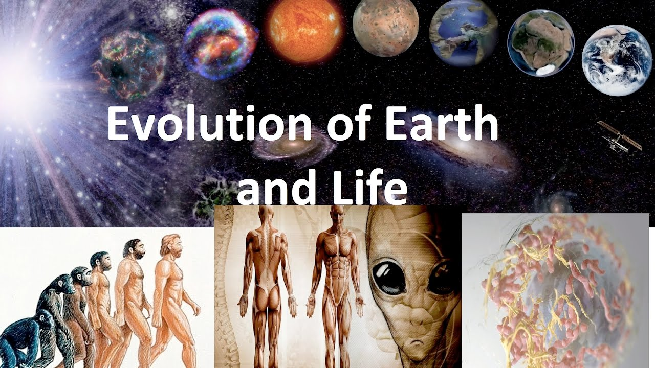 Evolution of Earth and Life | from begining | Time Travel | best ...