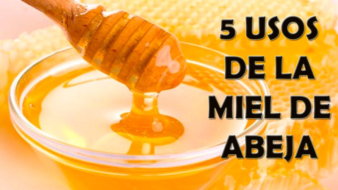 5 Usos de la MIel De Abeja - Como Usar La Miel de Abeja