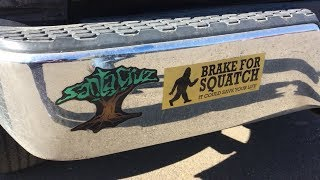 We totally love these bumper stickers! (OWL 0503)
