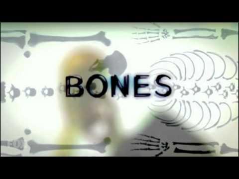 Bones Theme Season 8 - 9