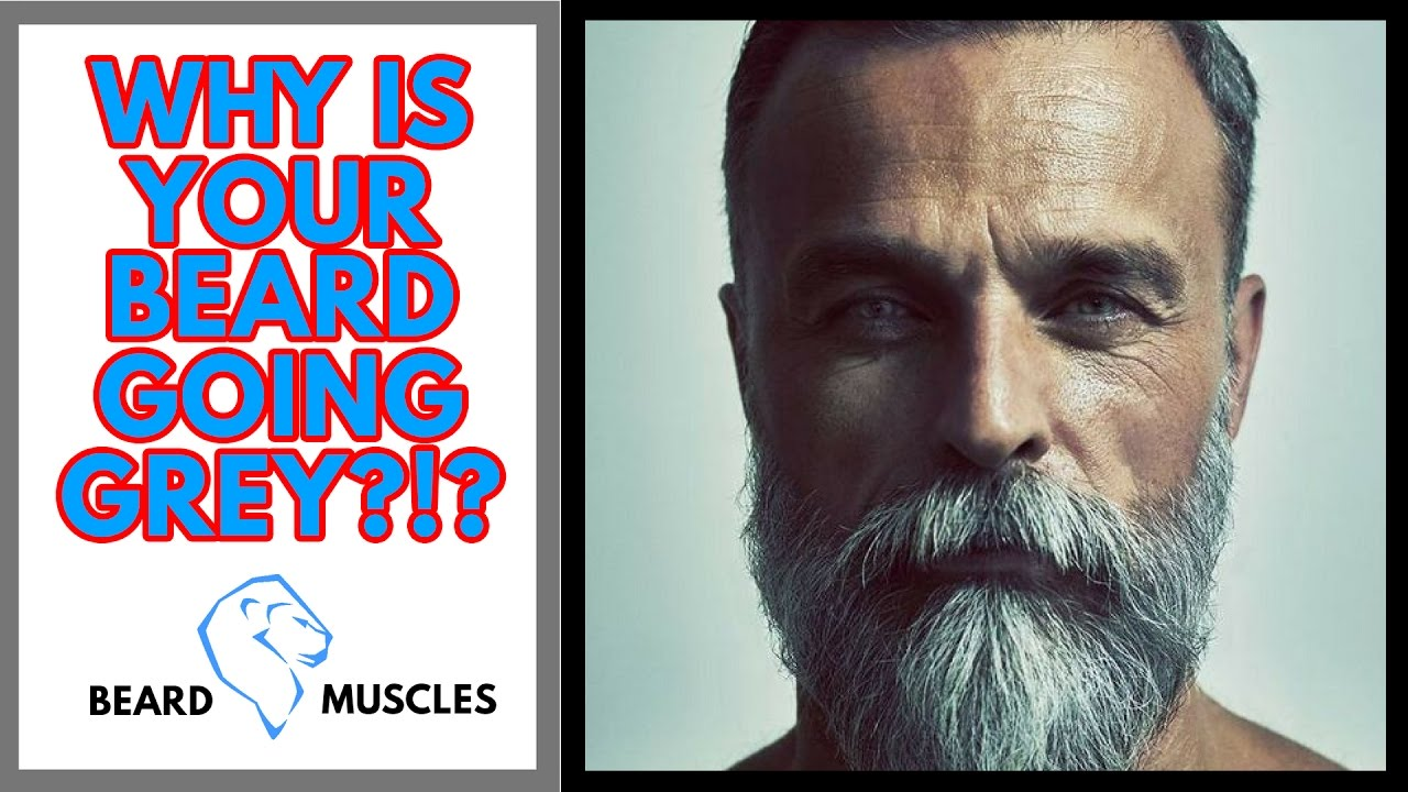 Why Do Beards Turn Grey First? – Kings of Today