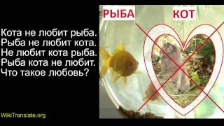 Кота не любит рыба - Грамматика русского языка