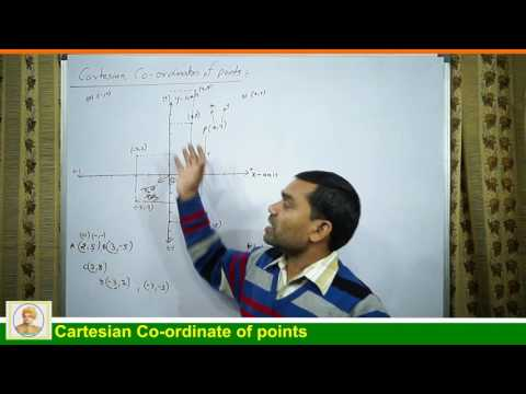 Cartesian Coordinates of Points in hindi (Lecture 1)