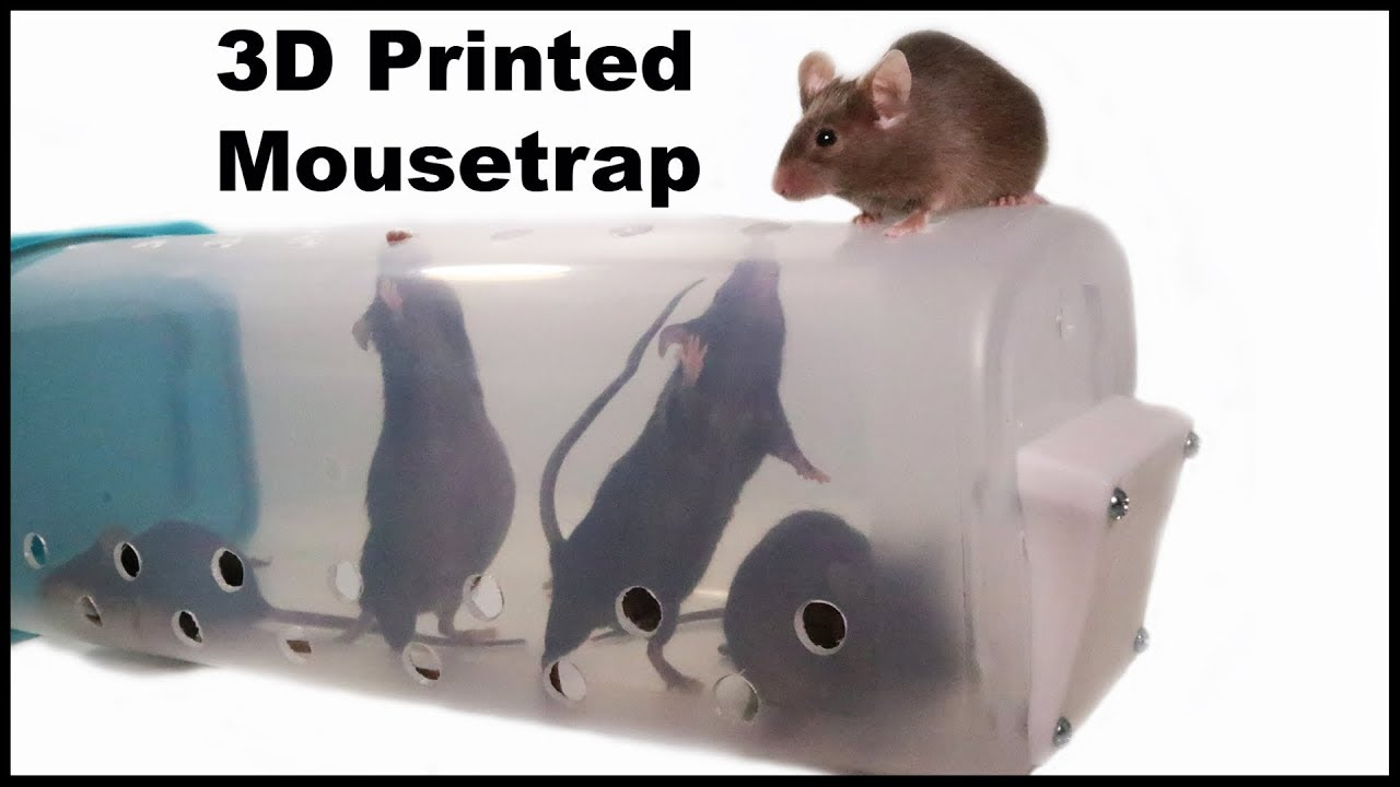 3d-printed-live-catch-mouse-trap-designed-by-a-youtube-viewer-mousetrap-monday