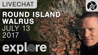 Round Island Walrus - Ryan And Margaret - Live Chat thumbnail