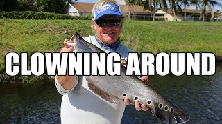 Clown Knife Fish and Largemouth Bass in South Florida