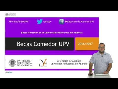 Becas Comedor UPV