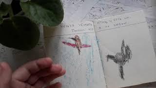 Ребенок вегатарианец написал книгу «Почему нельзя есть животных»
