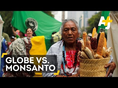 400 Global Cities Vs. Monsanto