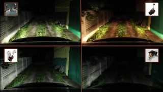 ЧАСТЬ 6.2: LED ФАРЫ - светодиоды против галогенок | PART 6.2: LED FOG LIGHTS - LED vs Halogen(часть 1 ~ http://youtu.be/RZh7wsa7wUE часть 2 ~ http://youtu.be/2u6mAWEcNeE часть 3 ~ http://youtu.be/64XZRqOJ2CE часть 4 ..., 2014-07-30T08:45:51.000Z)