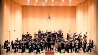 J.Brahms : symphony no.1  / 1st. mov. un poco sostenuto -  Allegro