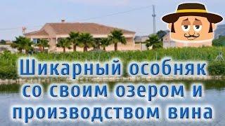Элитная недвижимость в Испании. Особняк с виноградником и озером. (ID 136)