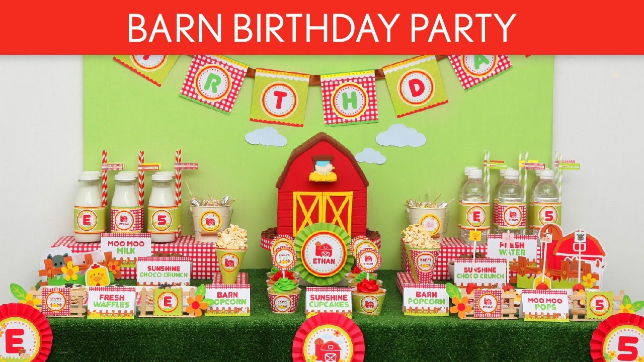 Farm Barn Birthday Party Ideas