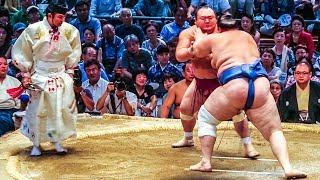 JAPAN NATIONAL SUMO TOURNAMENT!