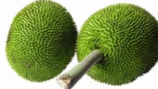 Breadnut Fruit Health Benefits