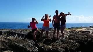 Доминикана. Рекламный ролик экскурсии по острову. Occidental Caribe.Punta Cana