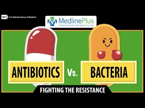 Antibiotics Vs. Bacteria: Fighting The Resistance