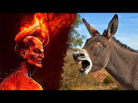Eşek Şeytanı Görünce Neden Ses Çıkarıyor ? Şeytanı Gören Hayvan.