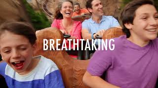 It's A Great Time For ... Walt Disney World Resort