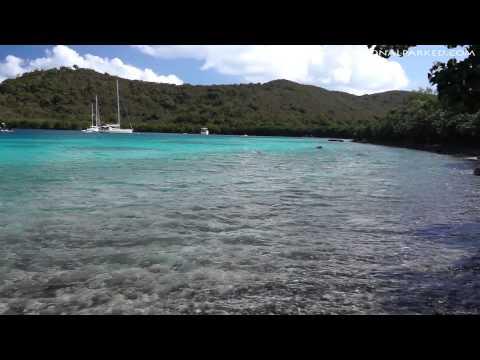 Leinster Bay in Virgin Islands National Park (1080p)