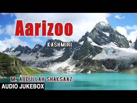 AARIZOO (Audio JUKEBOX) || M. ABDULLAH SHAKSAAZ || Kashmiri Song 2017 || T-Series Kashmiri Music