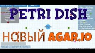 Все пароли от кланов и скинов в Петри Диш,Чашка Петри,Petri Dish #2