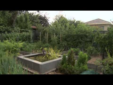 diy water tank - sustainable gardening