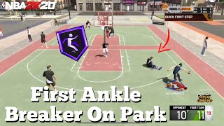 NBA 2K20 Hall Of Fame Ankle Breaker On The Park! (My First Ankle Breaker)