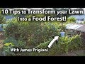 10 Tips to TRANSFORM your LAWN into a FOOD FOREST!
