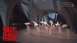 [舞蹈世界]舞蹈《秋水遥》 表演:星海音乐学院舞蹈学院| CCTV综艺