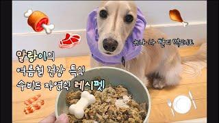 ENG) 보양식 먹는 강아지 / 닥스훈트 말랑이의 레시…