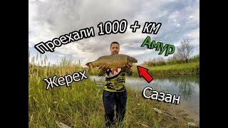 Закрытие летнего сезона 2019,трудовая рыбалка на реке ИЛИ.(АМУР,САЗАН,ЖЕРЕХ)