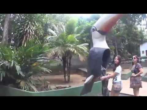 AmazôniaUSA - Zoôlógico CIGS - Manaus,AM Brasil