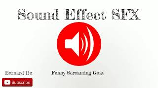 Funny Screaming Goat - Sound Effect SFX Full HD