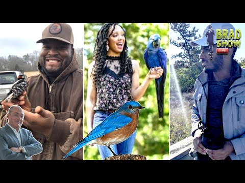 these-black-nature-lovers-are-busting-stereotypes,-one-cool-bird-at-a-time-@brad-show-live