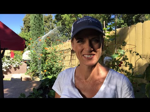 🍅LIVE: 5  Fall Gardening Tips and How to Enter Giveaway (replay)