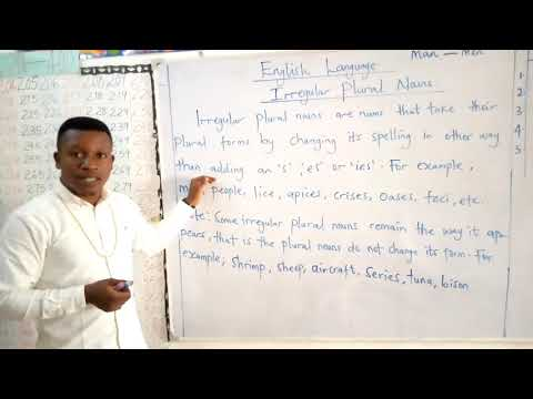Milestone Academy Grade 2 English language (Irregular Plural Nouns)