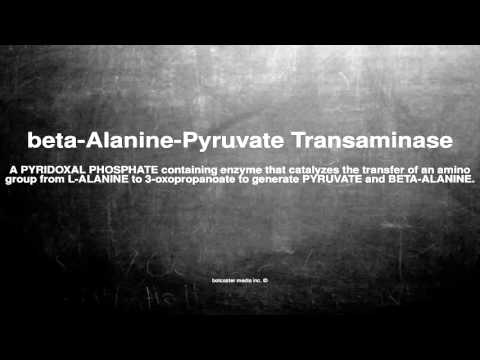 Medical vocabulary: What does beta-Alanine-Pyruvate Transaminase mean