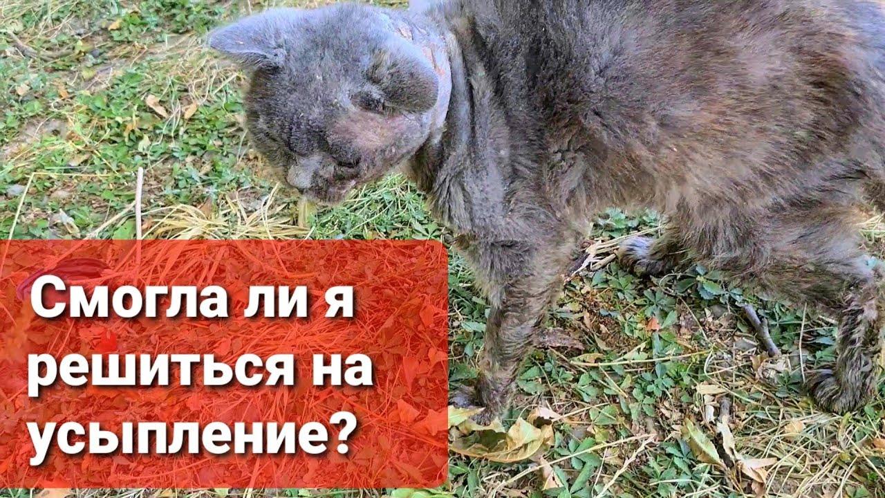 Полное видео вчерашней поездки в Ставрополь.