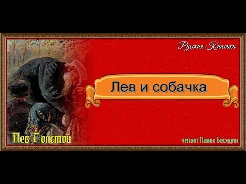 Лев и собачка —Лев Толстой —читает Павел Беседин - YouTube