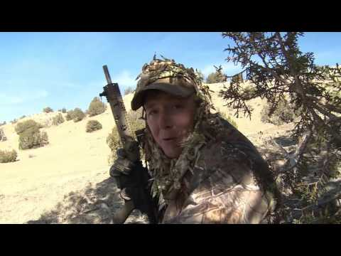 The Follow-Up Shot - Why You Should Use An AR For Predator Hunting