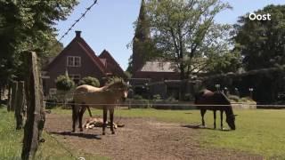 Mooi Overijssel in Luttenberg: Sfeerimpressie Luttenberg