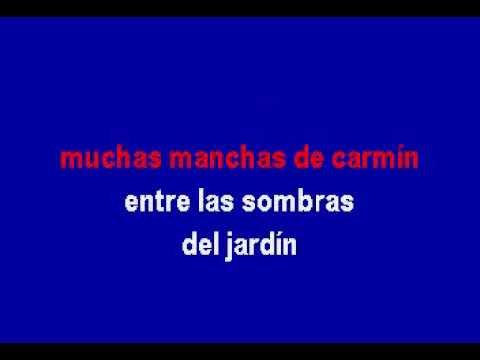 Roberto Carlos - Amante a la antigua  karaoke
