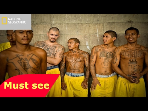 New Mexico Gangs Documentary 2017 HD   DEADLY Gangs of Albuquerque !