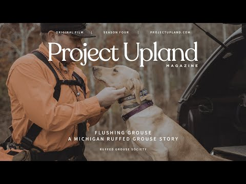 Flushing Grouse - Ruffed Grouse Hunting Michigan - A Project Upland Original Film