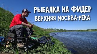 Рыбалка на Фидер. Верхняя Москва-река.