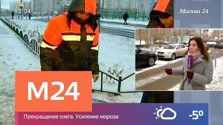 Смотреть видео В одном из дворов в Марьине установили бетонные полусферы - Москва 24 онлайн