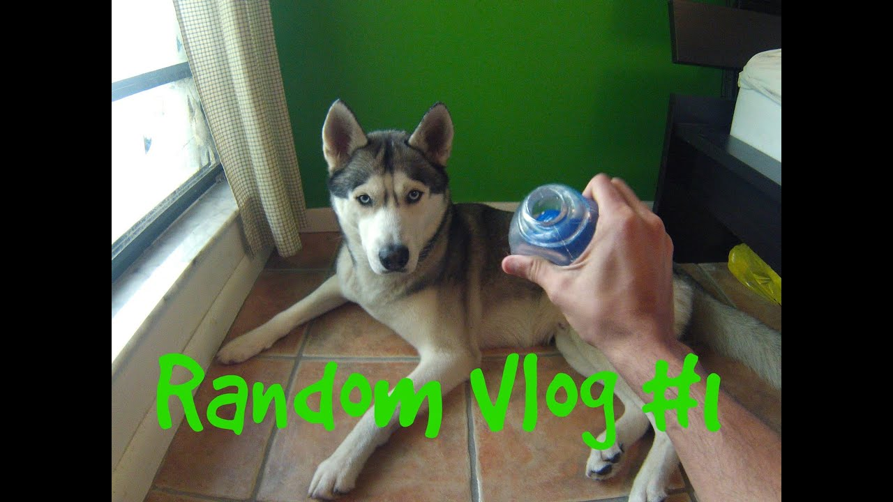 Peanut Butter Ball and Walks - Random Vlog Day #1